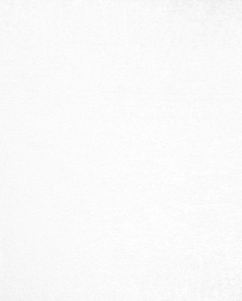 Artic White Wall Tile